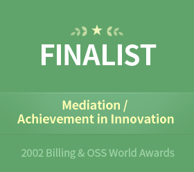 "Jun. 20022002 Billing&OSS World AwardsNominated for the ""Mediation"" and ""Achievement in Innovation"" awards at the Billing & OSS World Excellence Awards 2002"